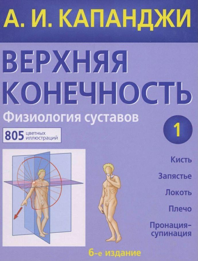 Физиология суставов (верхняя конечность)